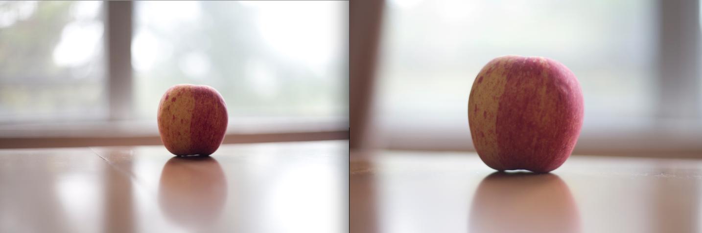 full frame vs. aps-c: a photo guide | nicole c white